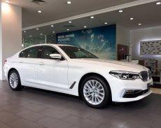 Cần bán lại xe BMW 5 Series 530i đời 2019, màu trắng, nhập khẩu nguyên chiếc chính hãng mới 100% giá 3 tỷ 69 tr tại Tp.HCM
