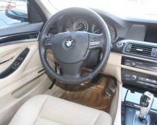Bán ô tô BMW 5 Series 523i sản xuất 2010, màu bạc, nhập khẩu nguyên chiếc, giá tốt giá 850 triệu tại Tp.HCM